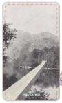 Tarot Series (The Bridge)