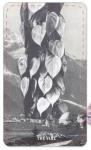 Tarot Series (The Vine)